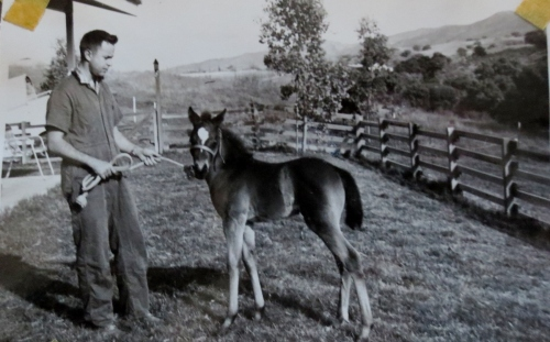 A young Doc Miller with one of our colts